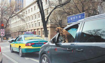 危险!如此开车