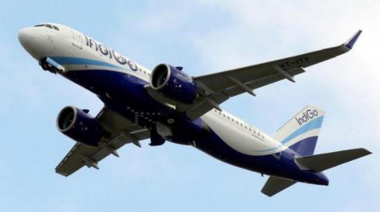 印度乘客抱怨有蚊子被赶下飞机 航空公司:你移民啊