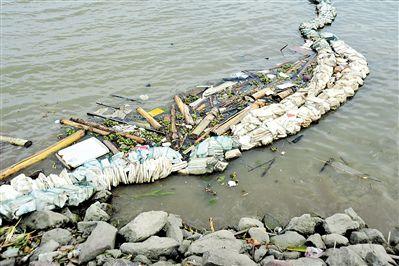 广州番禺海鸥岛特殊地理位置致使江河垃圾靠岸积聚