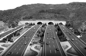 成都天府国际机场高速将与新机场同步建成通车