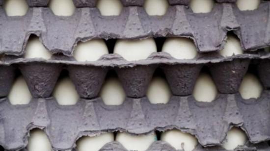美国2亿多枚鸡蛋感染沙门氏菌 官方下令召回