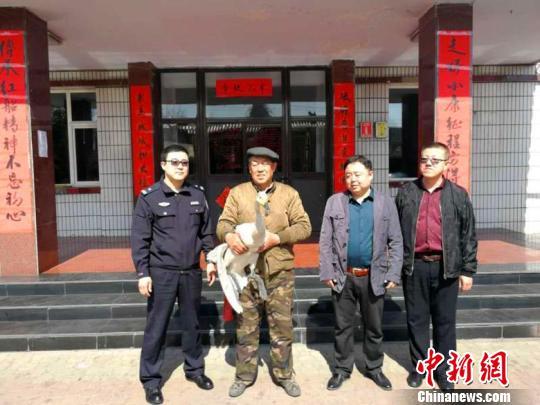 国家二级保护动物白天鹅因病被困山西警民接力救助