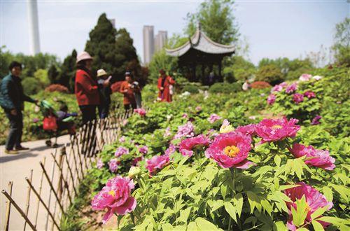 天气转暖徐州市民纷纷踏春出游 享受好时光