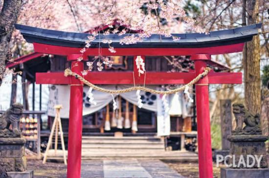 不止樱花,日本这5条美食街更让人无法抗拒