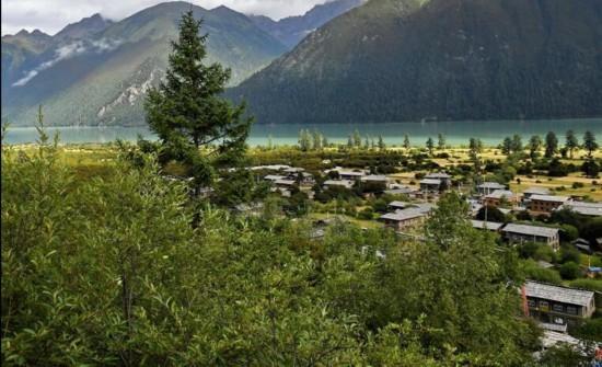 西藏林芝结巴村:不砍树搞旅游富了