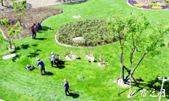 宿迁:加强绿地管护 营造良好环境