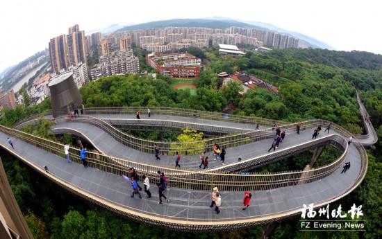"""福州主城区300公里路段撑起""""绿伞"""" 出行500米可见公园"""