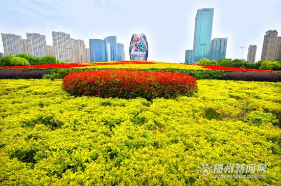 引入新品种花卉 福州园林扮靓峰会喜迎四方宾客