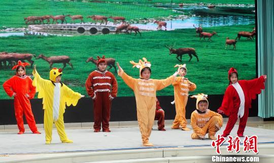 寓教于乐北京中小学生自编自导科普短剧汇演