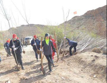 志愿者将树苗背上山