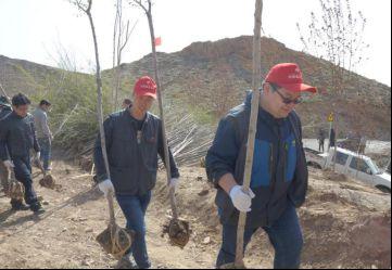 志愿者将树苗背上山栽种