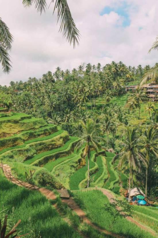 巴厘岛 图片来源自Pinterest@Emma Elizabeth
