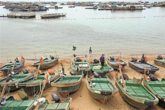 南海伏季休渔108天 深圳大鹏开展海上执法