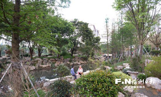"""福州水系治理突出绿色生态:推广生态驳岸为水生植物""""筑家"""""""