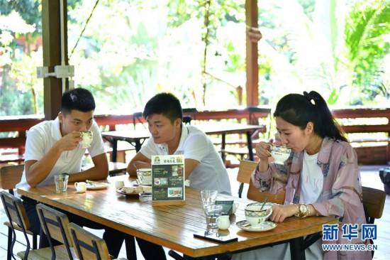 (经济)(4)海南万宁:咖啡产业助推经济发展