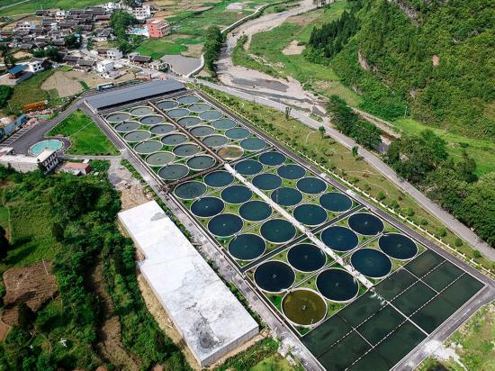 【美丽中国长江行】生态创新助力脱贫致富 这个小村不简单!