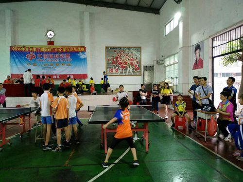 """开平市""""福彩杯""""中小学生乒乓球比赛"""