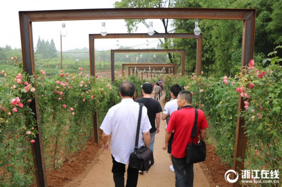 湖州:玫瑰文化节绽放中国美妆小镇