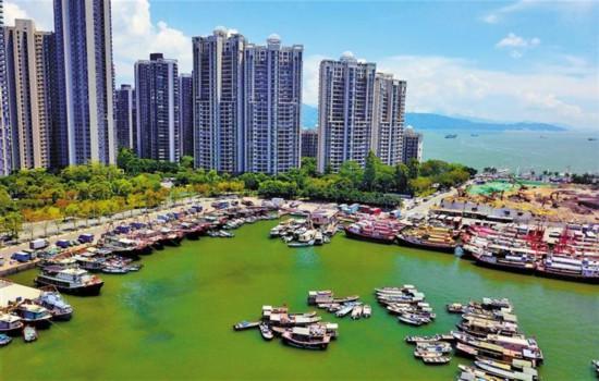 深圳蛇口渔人码头旧改计划6月动工