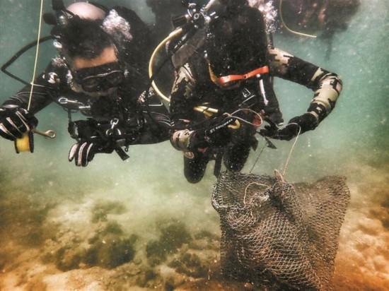 深圳民间珊瑚保育组织清理海洋垃圾