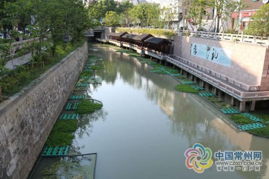 或方或圆 常州溧阳护城河现500米长生态浮岛