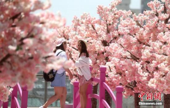 北京气温回升 开启晴晒模式