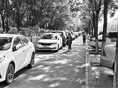 北京首条自行车专用路9月开工