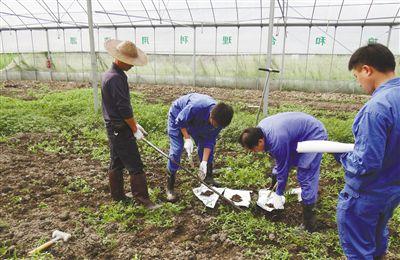 浙江加快土壤修复治理步伐