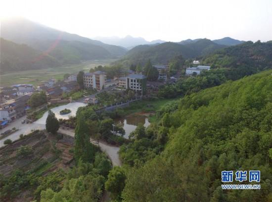 (经济)(3)福建洋口林场:深山里的中国杉木种质资源库