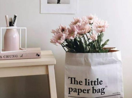 (未完成)用纸袋装植物,宅在家就能拍出时尚大片!