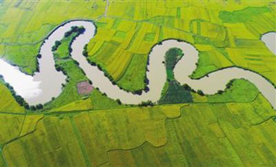 海口:统筹施治,对山水林田湖草一体化修复