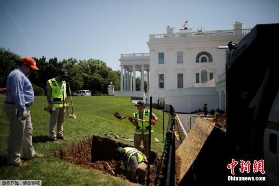 美国白宫草坪现天坑 工人紧急修理
