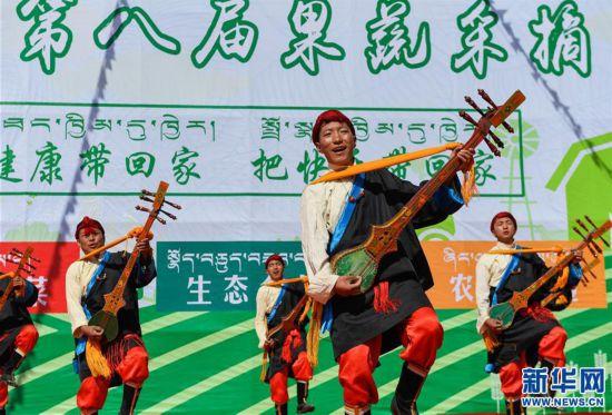 """(经济)(3)西藏白朗""""田园超市""""迎来采摘季"""