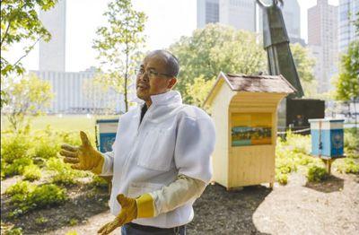 保护蜜蜂就是保护人类自己
