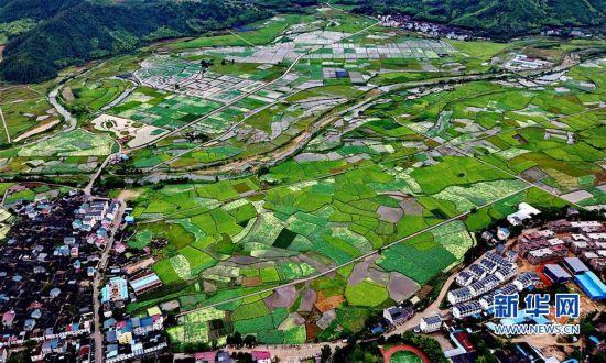 (经济)(1)武夷山:万亩荷花引客来