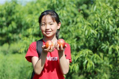 海安开发区发展现代农业 带动农民增收致富
