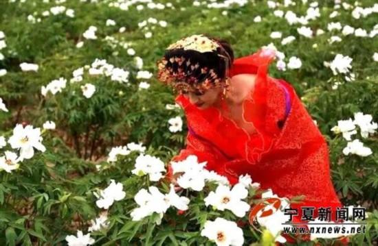 隆德县休闲农业与乡村旅游文化节将于6月6日举办