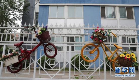 废旧自行车巧变装饰品
