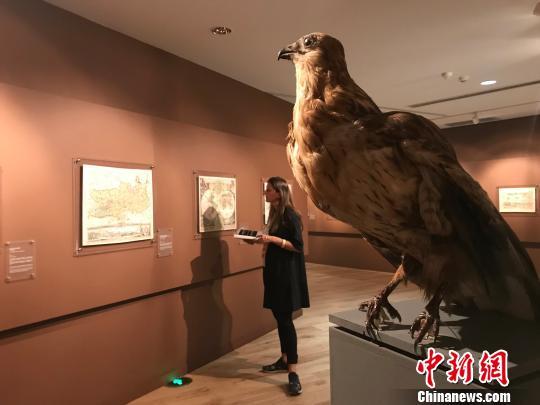 30个国家92位艺术家参展宁夏双年展:从沙漠出发寻找丝路印记