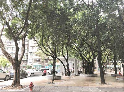 记者实探广州天河首个微改造小区