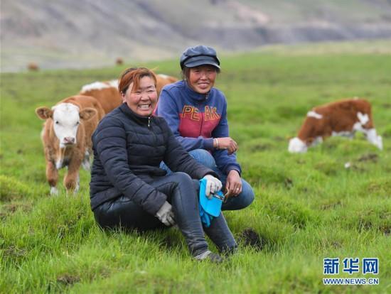 (图片故事)(15)阿鲁科尔沁草原上的游牧迁徙