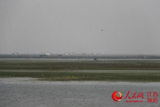拆除围网建标准化池塘 苏州推进生态养殖