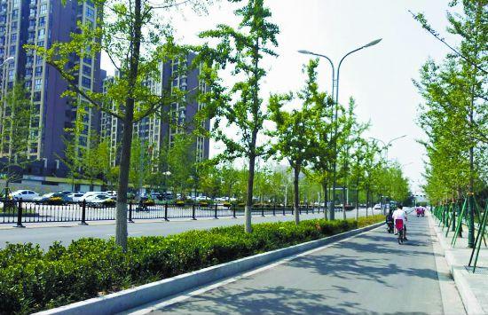 """徐州沛县""""三城同创"""" 共建一个美好家园"""