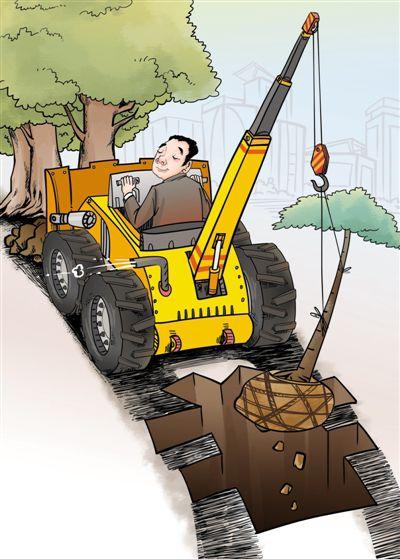 建设森林城市 莫花冤枉钱