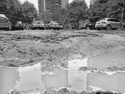 乱停车毁了小区绿地 雨天草坪变泥塘