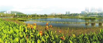三亚预计建设国家湿地公园 让市民诗意栖居