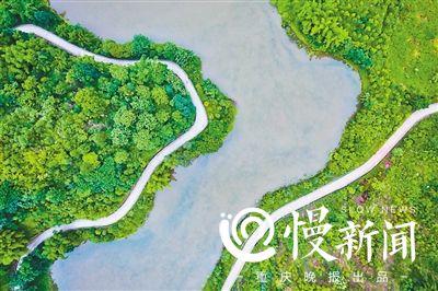 主城最大湿地公园啥样? --重庆频道--人民网
