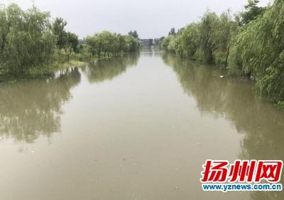 3.5小时降水量超262�L 扬州郭村迎史上最强降雨