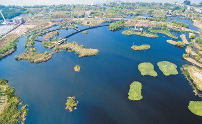 云南昆明呈贡区调整产业结构:不种花的梅子社区,更美了