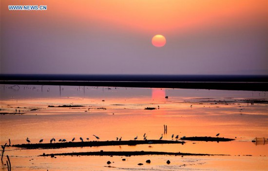 #CHINA-WETLAND PROTECTION (CN)